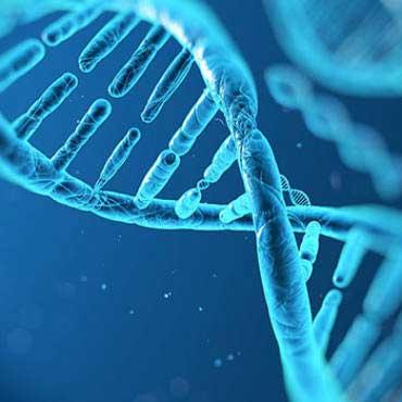 Wat zit er in je DNA?